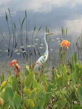 Egret and Iris by Barbara Von Pagel