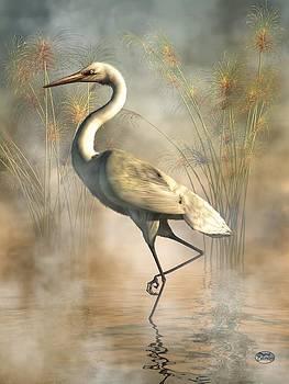 Egret by Daniel Eskridge