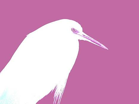 Egret In Mauve by Elizabeth Thankful Shannon