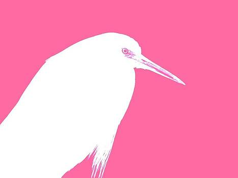 Egret In Pink by Elizabeth Thankful Shannon