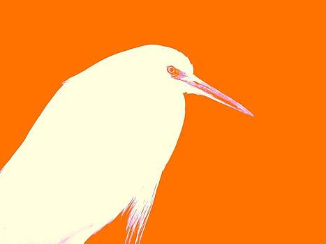 Egret In Tangerine by Elizabeth Thankful Shannon