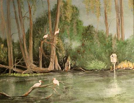 Egret Island Middle Lake by Marcia Crispino