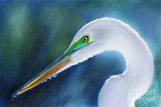 Egret  by Jan Gibson