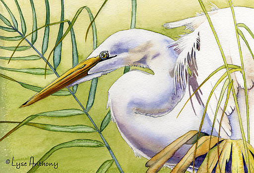 Egret by Lyse Anthony