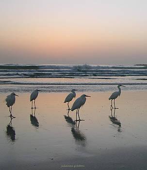 Egret Morning Sunrise Surf by Julianne Felton