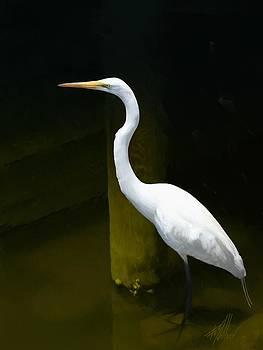 Egret Wading by Forest Stiltner
