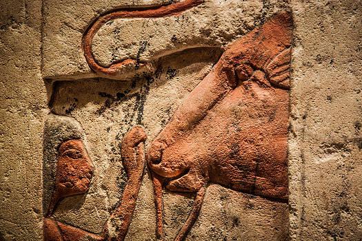 James Woody - Egyptian Exhibit-6
