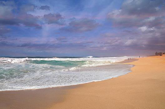 Ehukai Beach by Sandra Sigfusson