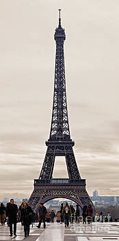Eiffel Tower in a Cloudy Winter Day by Radu Razvan
