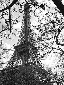 Eiffel Tower Version 2 by Ty Cook