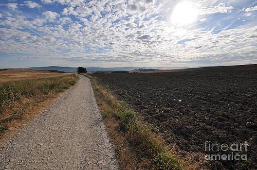 El Camino de Santiago by Sara Kennedy