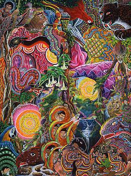 El Encanto de las Piedras by Pablo Amaringo