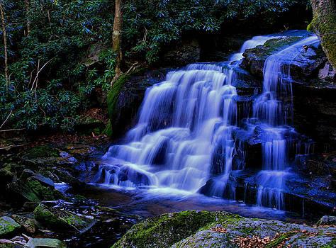 Matthew Winn - Elakala Falls III