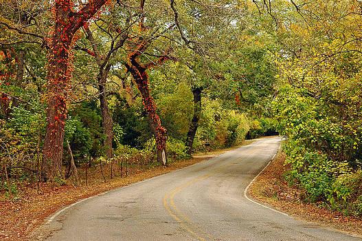 Robert Anschutz - Elder Hill Road