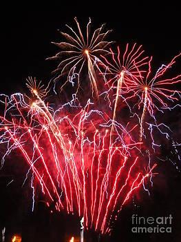 Electric City Fireworks 2013 II by Daniel Henning