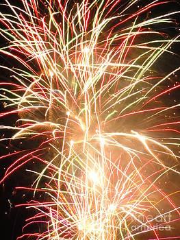 Electric City Fireworks 2013 III by Daniel Henning