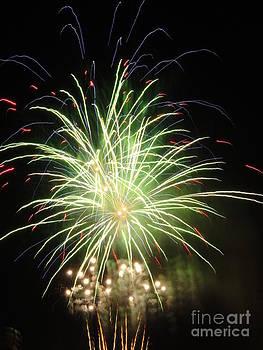 Electric City Fireworks 2013 V by Daniel Henning