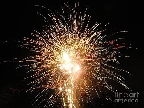 Electric City Fireworks 2013 VI by Daniel Henning