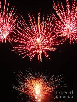 Electric City Fireworks 2013 VIII by Daniel Henning