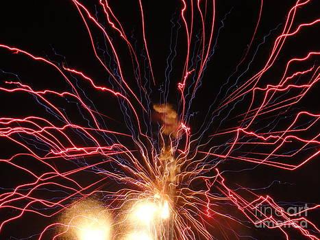 Electric City Fireworks 2013 XV by Daniel Henning
