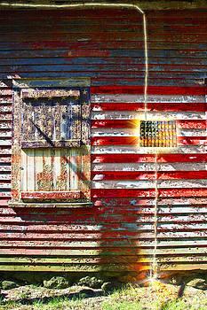 Electric Flag by David Phoenix