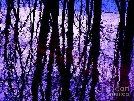 Electric Purples by Carolyn Kami Loughlin