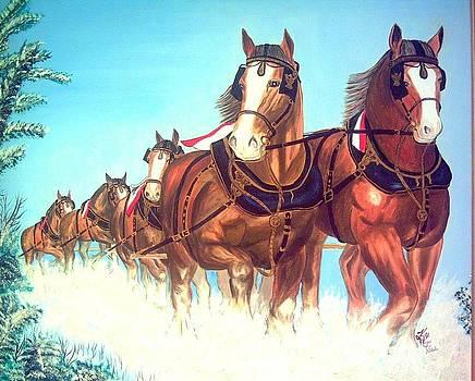 Elegant Equine  by Kathern Welsh
