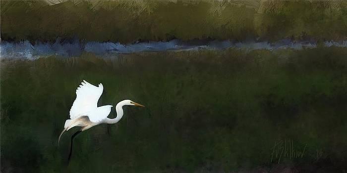 Elegant Landing by Forest Stiltner