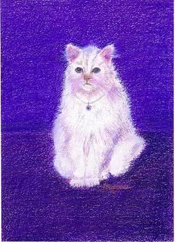 Elegant White Cat by Regina Taormino