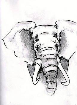 Elephant by Alexa  Barry
