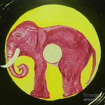 Elephant Cd by Juan Molina