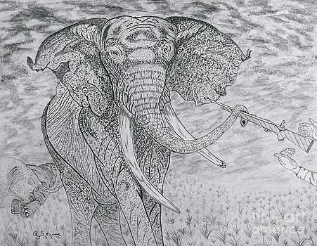 Elephant Gun by Gerald Strine
