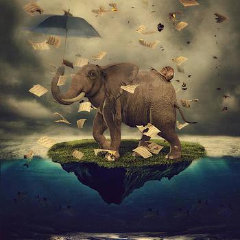 Elephant Island by Kim Zier