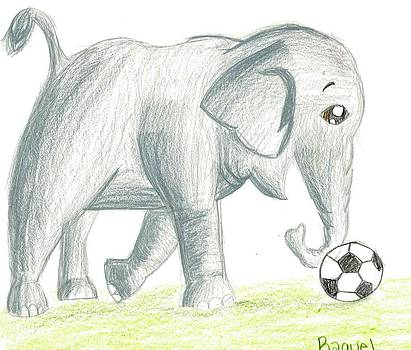 Elephant Playing Soccer by Raquel Chaupiz