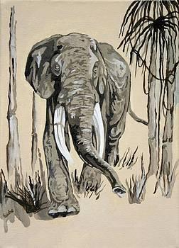 Tracey Harrington-Simpson - Elephant