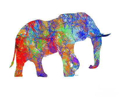 Elephant by Trilby Cole