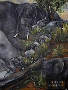 Elephant  Walk by Laneea Tolley