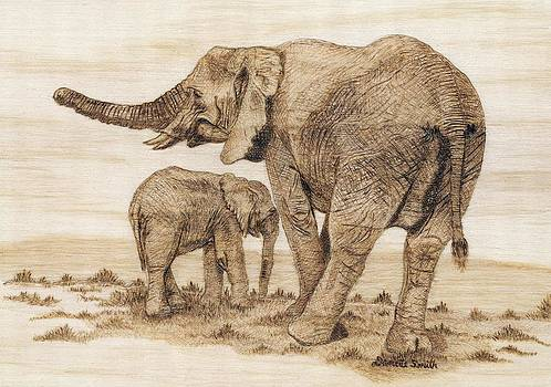 Elephants by Danette Smith