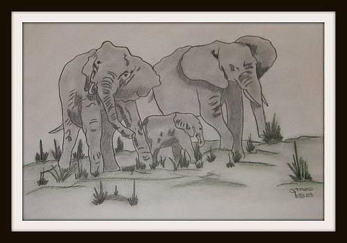 Elephants by Janet Moss