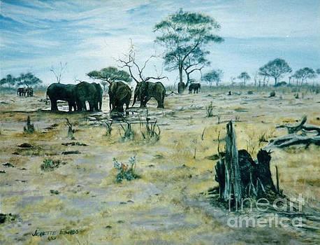 Jeanette Louw - Elephants Landscape