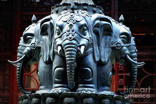 Elephants by Shawna Gibson