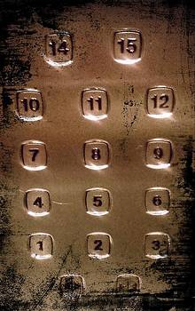 Elevator Numbers by Ted Mahy