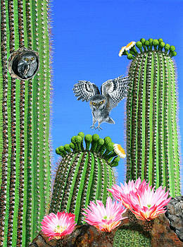 Elf Owls of Saguaro Desert by Wilfrido Limvalencia
