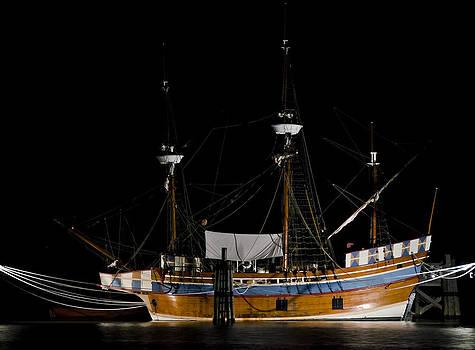 Elizabeth II in Port at Night by Greg Reed