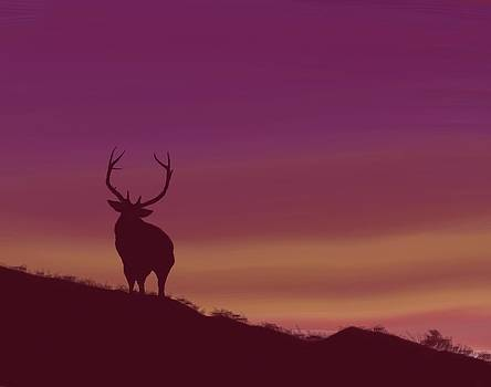 Elk at Dusk by Terry Frederick