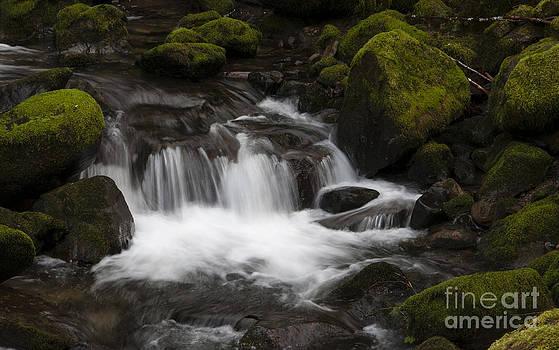 Vivian Christopher - Elk Creek Oregon 2
