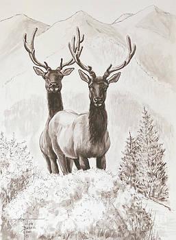 Art By - Ti   Tolpo Bader - Elk Encounter