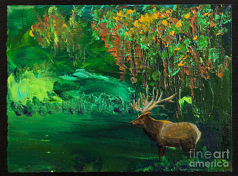 Elk Fall by Tracy L Teeter