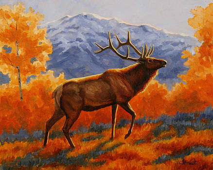 Crista Forest - Elk Painting - Autumn Glow