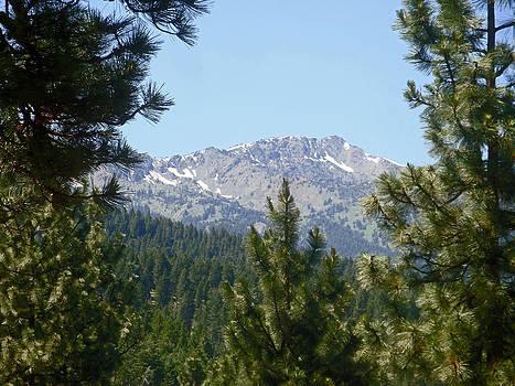Elkhorn Peak by Bill Talich